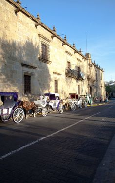 Guadalajara, Jalisco.  I saw these horses today as I drove through Guadalajara Centro.