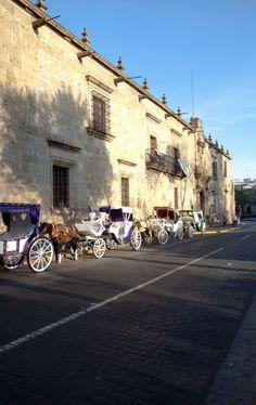 Guadalajara, Jalisco.  I saw these horses today as I drove through Guadalajara Centro.
