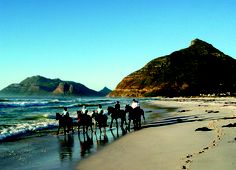 horseriding on Long Beach, Noordhoek Cape Town Accommodation, South Afrika, Horse Riding, Long Beach, Africa, Cottage, Tours, Horses, Activities
