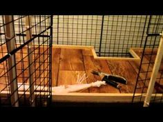 How To Build A NIC Rabbit Condo .. mayb the furrbabies will like something like this too