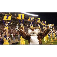 Geaux Tigers!! Crazy LSU football game days- things I will miss about Louisiana