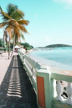 When the opportunity arose to travel to Vieques Island in Puerto Rico and to stay