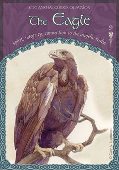 When the Eagle appears, it is a true signal of your connection to the angelic realm. With their help and guidance, you can soar above life to see the larger vista. The Eagle helps you make your choices accordingly, with integrity. When you pray to your angels, they will always answer, for they patiently wait for you to call upon them for assistance. The angels reside beside you, always hoping to aid humankind in finding peace and manifesting abundance and prosperity.