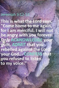 "Go, and proclaim these words toward the north, and say, 'Return, you backsliding Israel,' says Yahweh; 'I will not look in anger on you; for I am merciful,' says Yahweh. 'I will not keep anger forever. Only acknowledge your iniquity, that you have transgressed against Yahweh your God, and have scattered your ways to the strangers under every green tree, and you have not obeyed my voice,' says Yahweh."" -- Jeremiah 3:12-13"