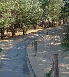 Duinbossen in De Haan-Wenduine