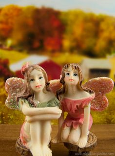 Mini fairy figurines in the fall fairy garden.