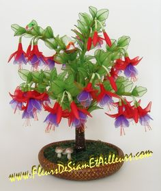 PHOTO ONLY ~ Grand Fuchsia