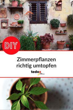 Tedox Der Renovierungs Discounter Tedoxderrenovierungsdiscounter Profil Pinterest