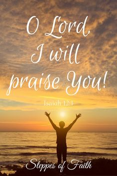 In every circumstance, every high and every low, I will praise you, O Lord! Scripture Cards, Bible Scriptures, Sunset Quotes God, Faith Quotes, Bible Quotes, Praise And Worship Quotes, Heartbroken Quotes, Heartbreak Quotes, Isaiah 12