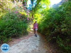 Wandelvakantie in Griekenland e4 25 oktober 2021 Crete Greece, Trekking, Climbing, Country Roads, Mountaineering, Hiking, Rock Climbing