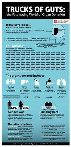Organ donation can save lives. Giving the gift of an organ is one of the best ways to tell someone you love them, or a way a person can continue to give after they have passed on.     Using statistics from the Organ Procurement and Transplantation Network, Healthline illustrated some key points about about organ donation, who donates, and the never-ending need for organ donors.