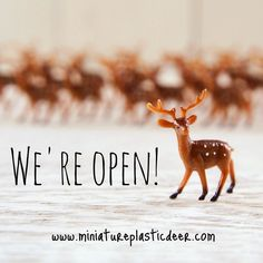 We're open!!! miniatureplasticdeer.com Use promo code DEERHAPPY for a 10% discount. Also enjoy free shipping for orders over $50.00 (US only). #launch #deer #startup #birthday #christmas #gift #love #instagood #happy