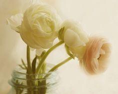 three flowers still life: ranunculus  i like the natural slope the three flowers make