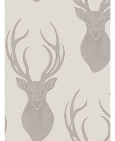 This stylish Rasch Stags Wallpape features a large stag motif with a beaded effect on a pale taupe background infused with a metallic shimmer. Free UK delivery available Stag Wallpaper, Wildlife Wallpaper, Animal Print Wallpaper, Feature Wallpaper, Wallpaper Online, Pattern Wallpaper, Black And Silver Living Room, Taupe Living Room, Taupe Bedroom