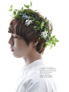 Yoo Seung-woo // Oh Boy!