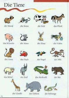 Die Tiere auf Deutsch - Los animales en alemán. Lern Deutsch - Aprender Alemán…