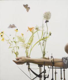 Robert & Shana Parkeharrison: Selections from the Counterpoint Series, Summer Arm, 2007 School Photography, Fine Art Photography, Object Photography, Conceptual Photography, Inspiring Photography, Inspiring Art, Photography Ideas, Organic Gardening, Urban Gardening