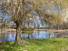 Gutspark von Kartzitz - Blick auf den großen Teich