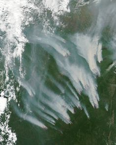 As in the western United States and northern Canada, Russia is ablaze. On July 11, 2012, more than 25,000 hectares (97 square miles) of forests were burning, according to the Russian Federal Forestry Agency. Most of the fires—uncontrolled wildfires in boreal forests—were in central and eastern Siberia.