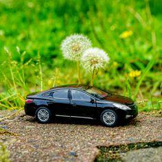 Make a #wish - @hyundai_company - #소원 을 빌고 #가볍게 후-! - #Hyundai #Motor #car #Grandeur #Azera #dandelionseeds #dandelion #diecast #toy #travelling #healing #goodluck #photooftheday #instadaily #현대자동차 #그랜저 #민들레 #민들레씨 #낭만 #다이캐스트 #양재 #일상 #데일리픽 #소통 #자동차 #자동차그램 #소소잼