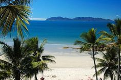 View from Rose Bay Resort, Bowen, North Queensland. Rose Bay, Find Cheap Hotels, Cheap Accommodation, Beach Hotels, Countries Of The World, Trip Advisor, Scenery, Places To Visit, Australia