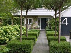Mooi groen, buxus, hortensia annabel en boompjes ....alleen dan nog een ander huis erachter :-)