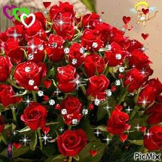 Mother's Day gift to all of the Mothers Beautiful Gif, Beautiful Roses, Amazing Flowers, Pretty Flowers, Love Smiley, Power Wallpaper, Love You Gif, Good Night Friends, Flowers Gif