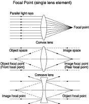 Afbeeldingsresultaat voor verdeling van beeldvlak bloemen