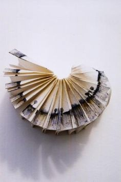 louisaboydart:  Landscape within a book - 2001 - Louisa Boyd http://www.facebook.com/louisaboydart