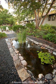 Rectangular Pond In Garden Edged By Gravel Path Under Trees
