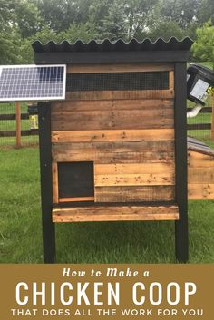 How to Make a Chicken Coop That Does All The Work For You!