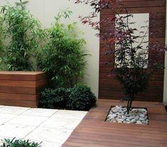 érable-japon-terrsse-cour-intérieure-bois