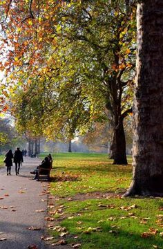 St James Park - London United Kingdom