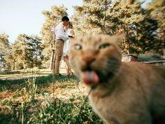 The Funniest Accidental Wedding Photobombs - https://www.soumo.eu/the-funniest-accidental-wedding-photobombs/