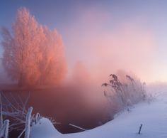 Прошлоновогодняя.... Бывали и морозы зимой :) #свислочь #утро #мороз #туман #рассвет #иней Автор: Алексей Угальников