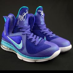 6d795db4e58 Nike LeBron 9