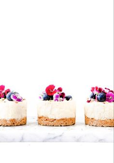 No-bake Lemon Cheesecake – Beyond Our Sky - kleinekuche Mini Lemon Cheesecake Recipe, Healthy Cheesecake, Cheesecake Bites, Individual Cheesecakes, Elegant Desserts, Mini Desserts, Digestive Biscuits, Sweet Wine, Rhubarb Recipes