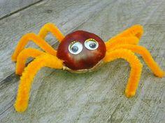 Chestnut spider! Spin van kastanje, ragers en oogjes. Fall craft. Herfst knutselen. (make holes with a screwdriver/maak gaten met een schroevendraaier)