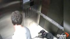 """""""The multimillionaire who was caught on camera abusing a puppy is being replaced as CEO of Centerplate.  Desmond Hague has managed the Connecticut-based multibillion-dollar sports catering company since 2009.  Last month, the Global News obtained surveillance footage of Hague in a Vancouver elevator kicking Sade, a 1-year-old Doberman Pinscher, and violently dragging her around by her leash."""