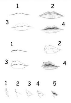 best lips drawing, pencil drawings, drawing people of techniques, great examples of pencil drawings. Mouth Drawing, Human Drawing, Human Sketch, Pencil Art Drawings, Cool Drawings, Drawings Of Lips, Art Sketches, Drawing Techniques, Drawing Tips