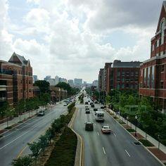 City View by Trish Nicholas