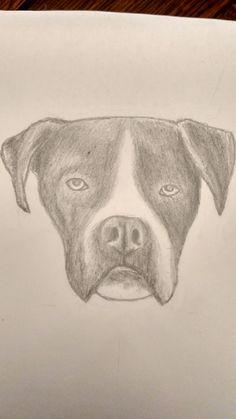 my dog Xop