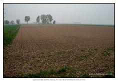 Nebel #petermarbaise #tuxoche