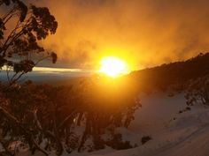 Mount Baw Baw (@MountBawBaw) | Twitter Australia Tourism, Tour Guide, Snowboard, Mountain Biking, Skiing, Tours, Adventure, Sunset, Explore