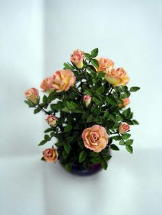 Oh how I love roses... especially miniature ones! <3