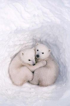 Awwwwww :) so sweet!