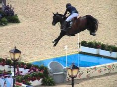 Horse Jumping Olympic Water. Something about this in slow motion is just awesome. Horses are amazing athletes