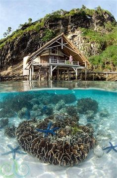 Misool eco resort Indonesia -#amazing #awesome #mountains #coral #hut #water