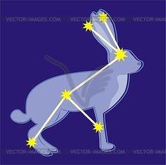 lepus constellation - Google Search