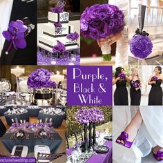 Purple with Black and White Wedding Colors.  I also like to add Magenta in with the dark purple,,, looks stunning with the black accents!